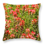 Red Texas Wildflowers Throw Pillow