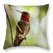 Red Throated Hummingbird Throw Pillow