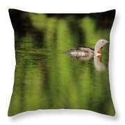 Red Throated Loon Throw Pillow