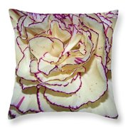 Red Tipped Carnation Throw Pillow