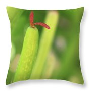 Red Tongue Throw Pillow