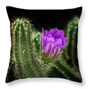 Red Torch Cactus Throw Pillow