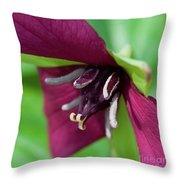 Red Trillium.. Throw Pillow