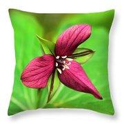Red Trillium Wildflower Throw Pillow