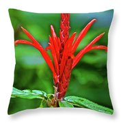 Red Tropical Flower In Huntington Botanical Gardens In San Marino-california  Throw Pillow