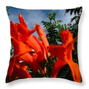 Red Trumpeter Throw Pillow