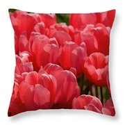 Red Tulip Buds Crest The Earth Throw Pillow