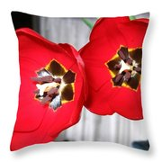 Red Tulip Duo Throw Pillow