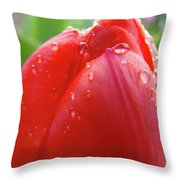 Red Tulip Flower Macro Artwork 16 Floral Flowers Art Prints Spring Dew Drops Nature Art Throw Pillow