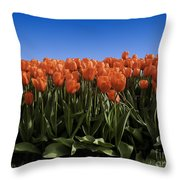 Red Tulip Garden Throw Pillow