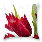 Red Tulip Heads Sprinkled Throw Pillow