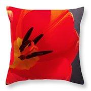 Red Tulip IIi Throw Pillow