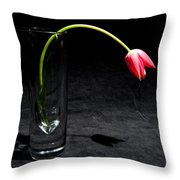 Red Tulip On Black Throw Pillow