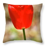 Red Tulip Throw Pillow by Teresa Mucha