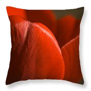 Red Tulip Up Close Throw Pillow