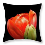 Red Tulip With Bud Throw Pillow