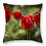 Red Tulips In Light Throw Pillow
