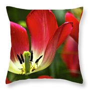 Red Tulips Petals Throw Pillow
