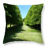 Red Twig Limes Throw Pillow