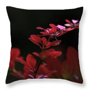 Red Twilight Throw Pillow