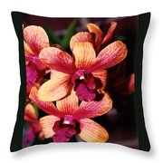 Red Twins Throw Pillow