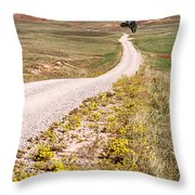 Red Valley Road Throw Pillow