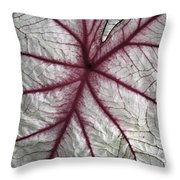 Red Veined Leaf Throw Pillow
