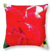 Red Velvet With Dewdrops  Throw Pillow
