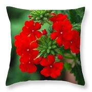Red Verbana Throw Pillow