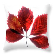 Red Vine Leaf Throw Pillow