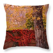 Red Vine With Maple Tree Throw Pillow