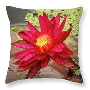 Red Water Lily Throw Pillow