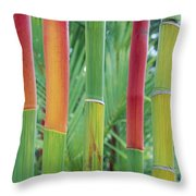 Red Wax Palm Stalks Throw Pillow