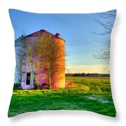 Red White And Blue Glory Throw Pillow