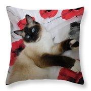 Red White And Ragdoll Kitty Cat Silktapestrykittenstm  Throw Pillow