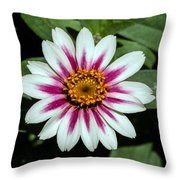 Red White And Yellow Flower Throw Pillow