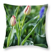 Red White Tulips Throw Pillow