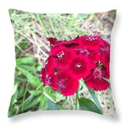 Red Wild Flowers Throw Pillow