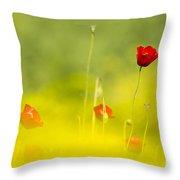 Red Wild Poppies Throw Pillow
