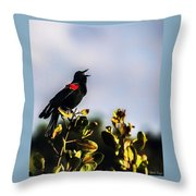 Red Wing Black Bird  Throw Pillow