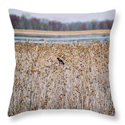 Red Wing Throw Pillow