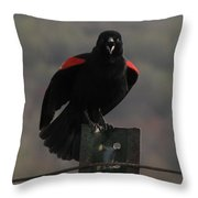 Red Winged Black Bird Throw Pillow