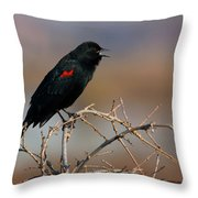 Red Winged Blackbird Call Throw Pillow