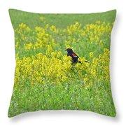 Red-winged Blackbird In Wild Mustard Throw Pillow