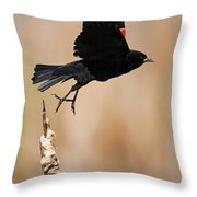 Red-winged Takeoff Throw Pillow