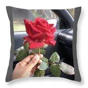 Red Winter Rose Throw Pillow
