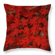 Red With Envy Throw Pillow
