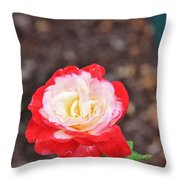 Red With Pink White Yellow Centered Rose Throw Pillow