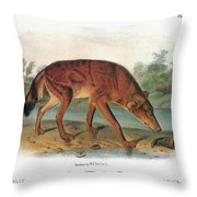 Red Wolf (canis Lupus) Throw Pillow