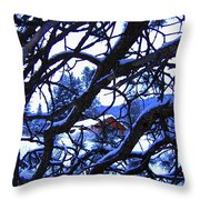 Red Woodshed Throw Pillow